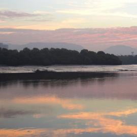 World Wetlands Day - Thane Creek - WCT