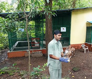 Catalysing Conservation by Strengthening NGOs - Karnala Bird Sanctuary