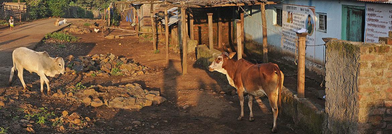 Village Social Transformation - WCT