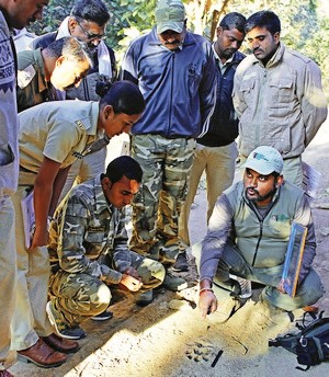 11500 Forest Officers Trained - Tiger - WCT