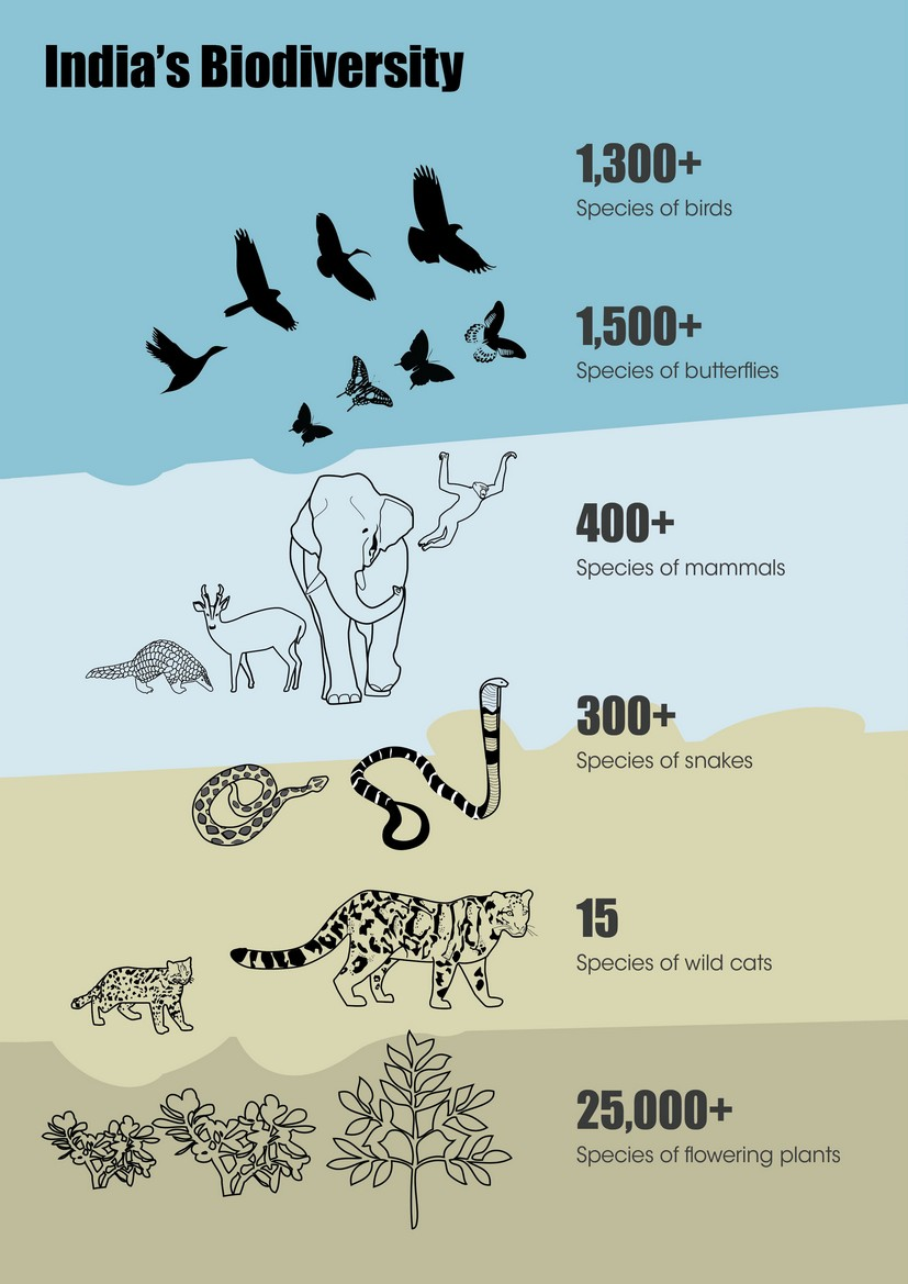 Conservation strategy - WCT - Indian Biodiversity
